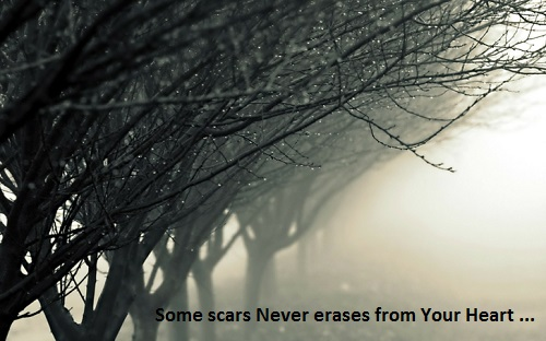 http://s6.picofile.com/file/8175046700/some_scars_never_erases_from_your_heart.jpg