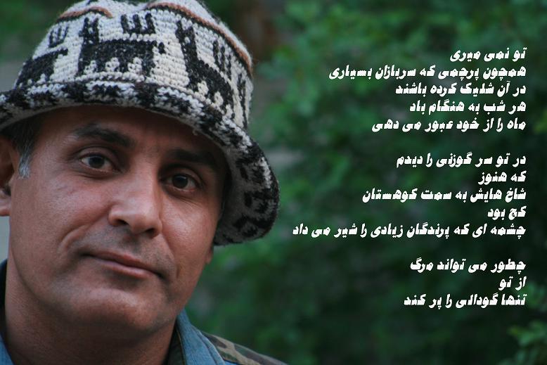 گلچین اشعار رضا بروسان
