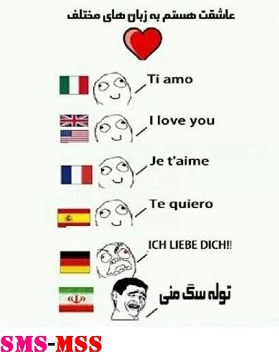 عاشقت هستم به زبان های مختلف،ترول خنده دار عاشقت هستم،ترول بامزه  عاشقت هستم،عکس خنده دار،ترول خنده دار