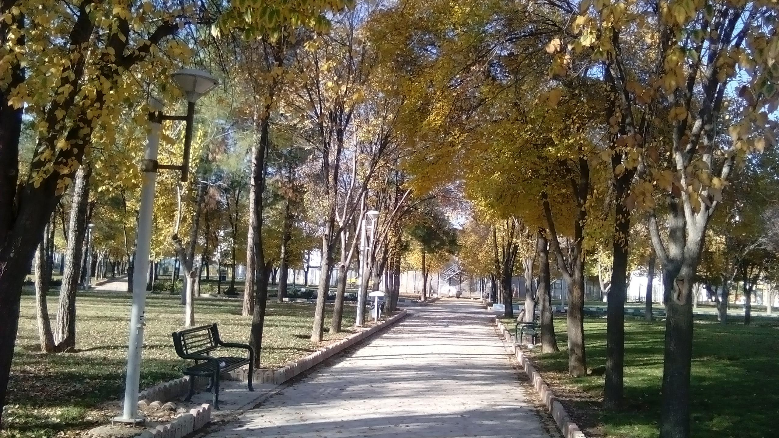 عکس پارک انقلاب مرودشت(اختصاصی سایت)