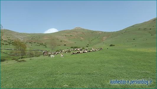 قله عباسعلی - مسیر فرود