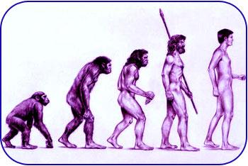 نظریه تکامل انسان