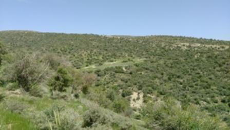کوه بیل /نمایی از یورد کَفکی