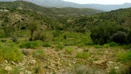 نواحی غربی کوه بیل