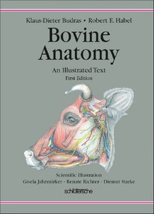 http://s6.picofile.com/file/8190846600/bovine_anatomy_shafa_veterinary_hospital.jpeg