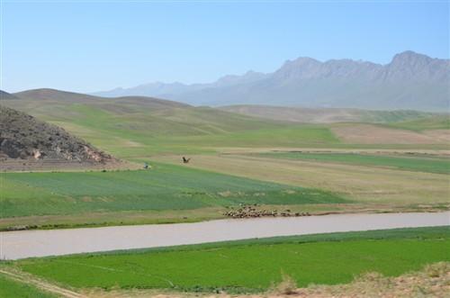 روستای مشهد کاوه