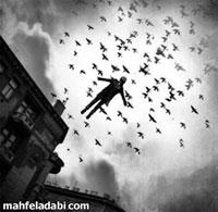 عکس مفهومی پرواز