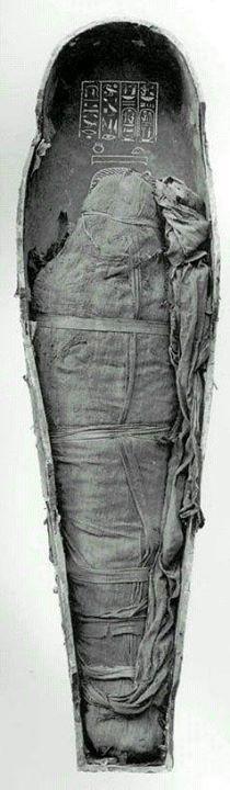 آمنهوتپ سوم ، فرعون مصر