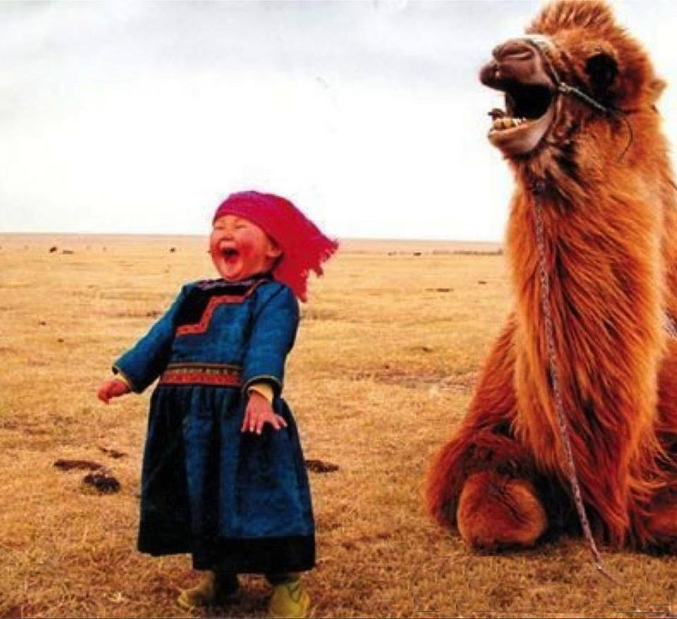 عکس بچه مغولستانی با حیوانات گرانبها،عکس های زیبا از طبیعت مغولستان،عکس با شتر،عکس شتر،عکس بچه