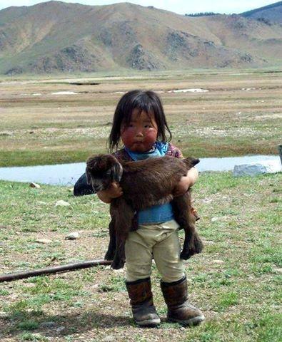 عکس بچه مغولستانی با حیوانات گرانبها،عکس های زیبا از طبیعت مغولستان،عکس با بره،عکس بره،عکس بچه،عکس بزغاله