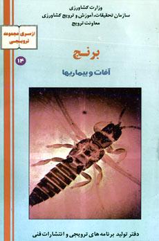 دانلود کتابچه فارسی آفات و بیماری های برنج