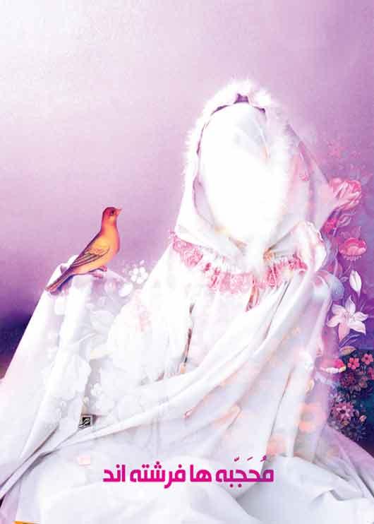 عفاف وحجاب،حجاب قانون فردی یا اجتماعی
