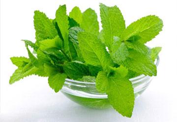 تقویت کننده گیاهی برای روزه داران