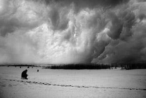 عکس تنها در برف