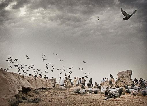 تصاویر مربوط به سالروز تخریب بقیع