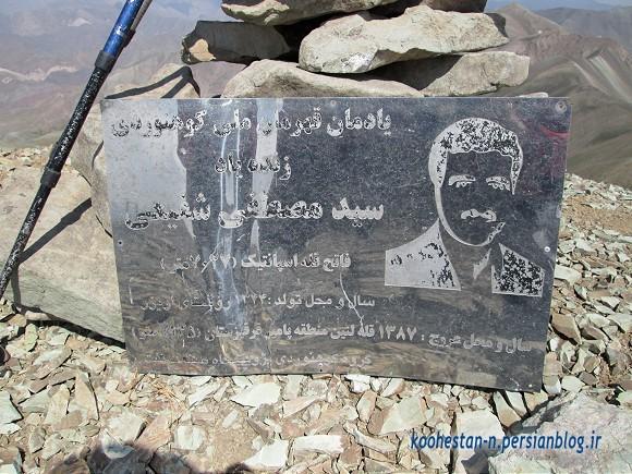سید مصطفی شفیعی