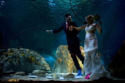 تصویر ازدواج زیر آب