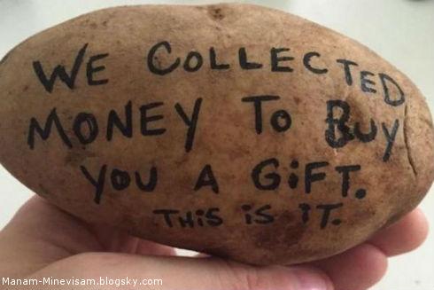 پولدار شدن با فرستادن سیبزمینی برای مردم