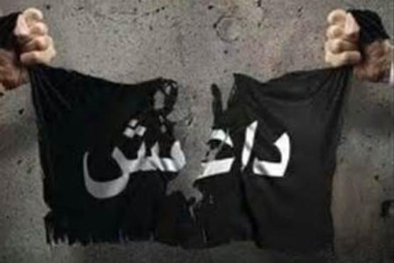 مسئول امور مالی داعش گریخت , اخبار گوناگون