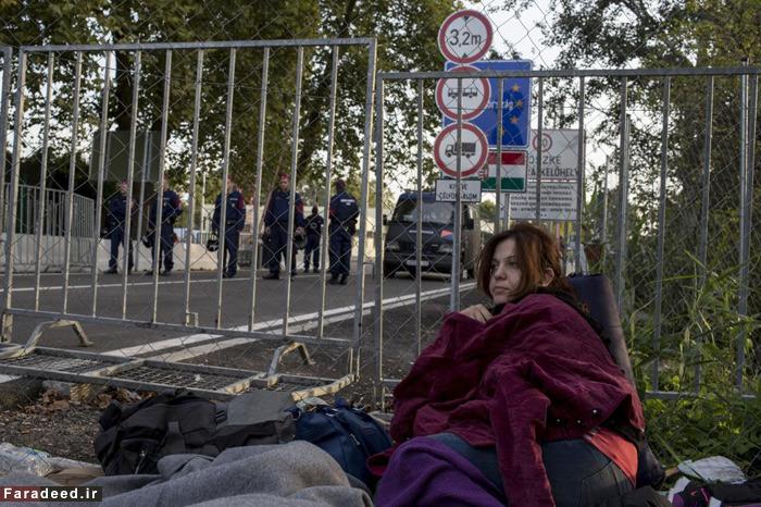 رفتار های غیر انسانی  و اهانت امیز اروپایی ها با مهاجرین ، مهری باطلی است بر ادعاهای دروغین آنان+ تص�