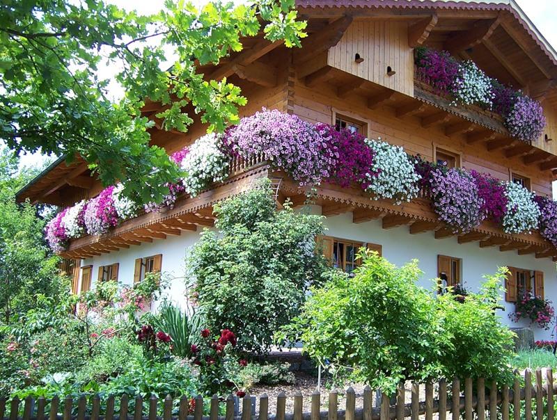 تصاویری از خانه های زیبا و رویایی