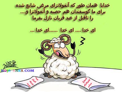 کاریکاتور های طنز عید قربان , تصاویر طنز