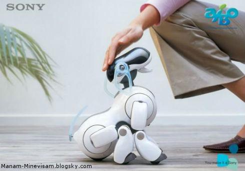 علاقه عجیب ژاپنیها به سگهای رباتی