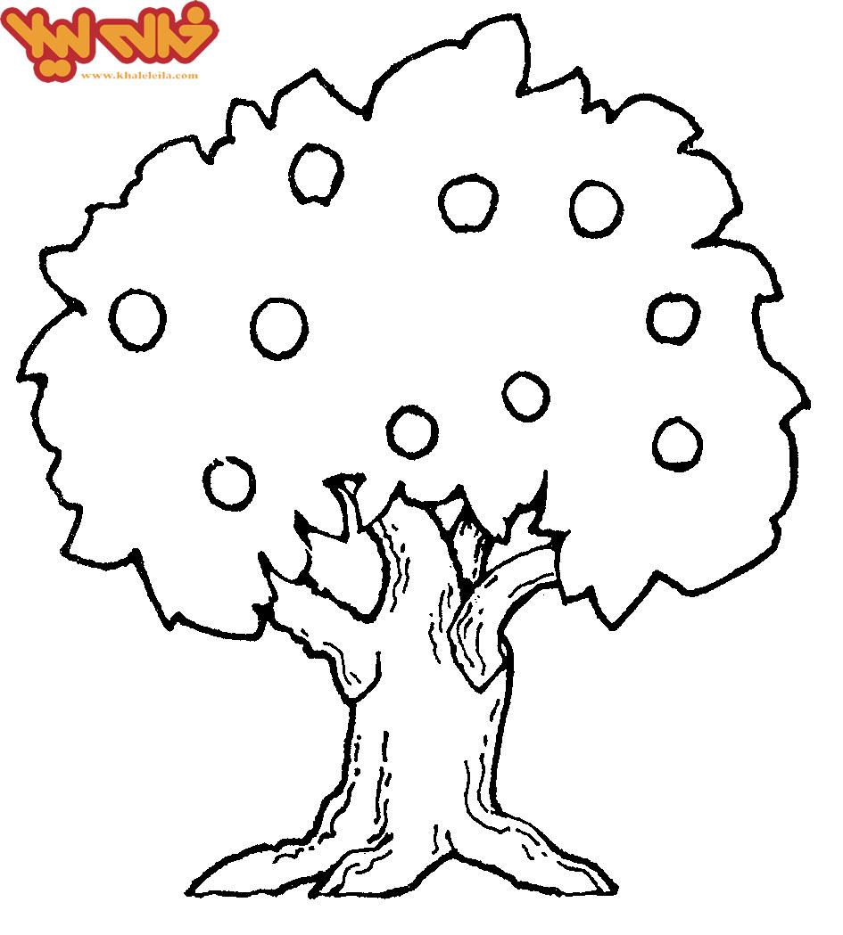 مدل بلوز کلوش رنگ امیزی نقاشی درخت روز درخت کاری | اسکیمو|تفریحی، خبری ...