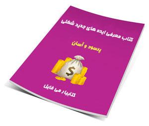 کتاب معرفی ایده های جدید شغلی