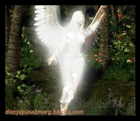http://s6.picofile.com/file/8218150526/Morning_Angel_angels_15925950_500_375.jpg