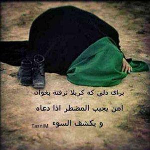 Ashura Real islam True islam Shia muslim Day of ashura2015 Imam hussain Imam hosayn