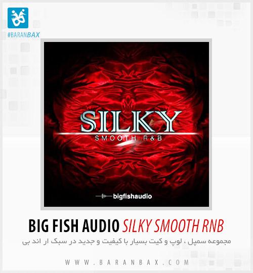 دانلود سمپل و لوپ Big Fish Audio Silky Smooth RnB