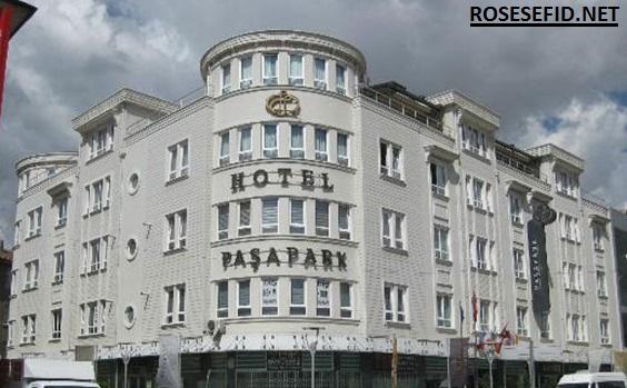 هتل پاساپارک قونیه (PASAPARK Hotel)