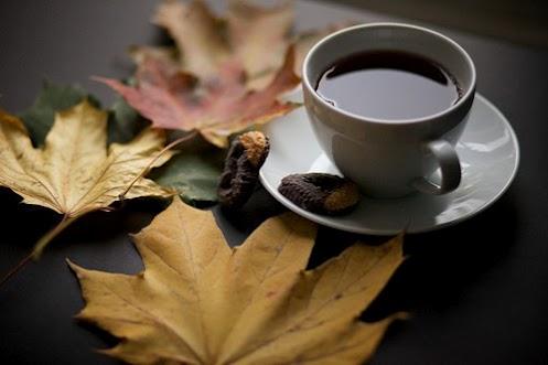 :: چایی ات را پُر از شِکر کردم، تا برایت دوباره هم بزنم ::