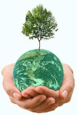 سروده ی محمد رضا امیری با عنوان « محیط زیست »