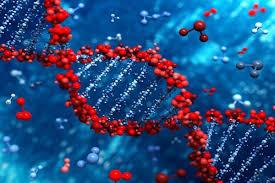 زیست شناسی سلولی مولکولی
