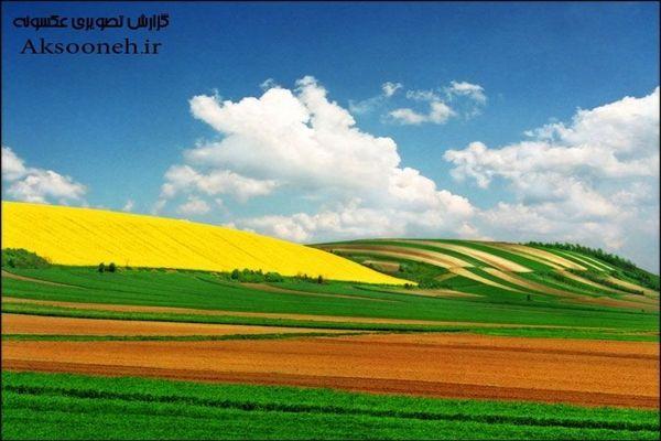 تصاویر زیبا از مزارع رویایی