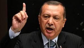 اردوغان دستور حمله به جنگنده  را صادر کرد , بین الملل