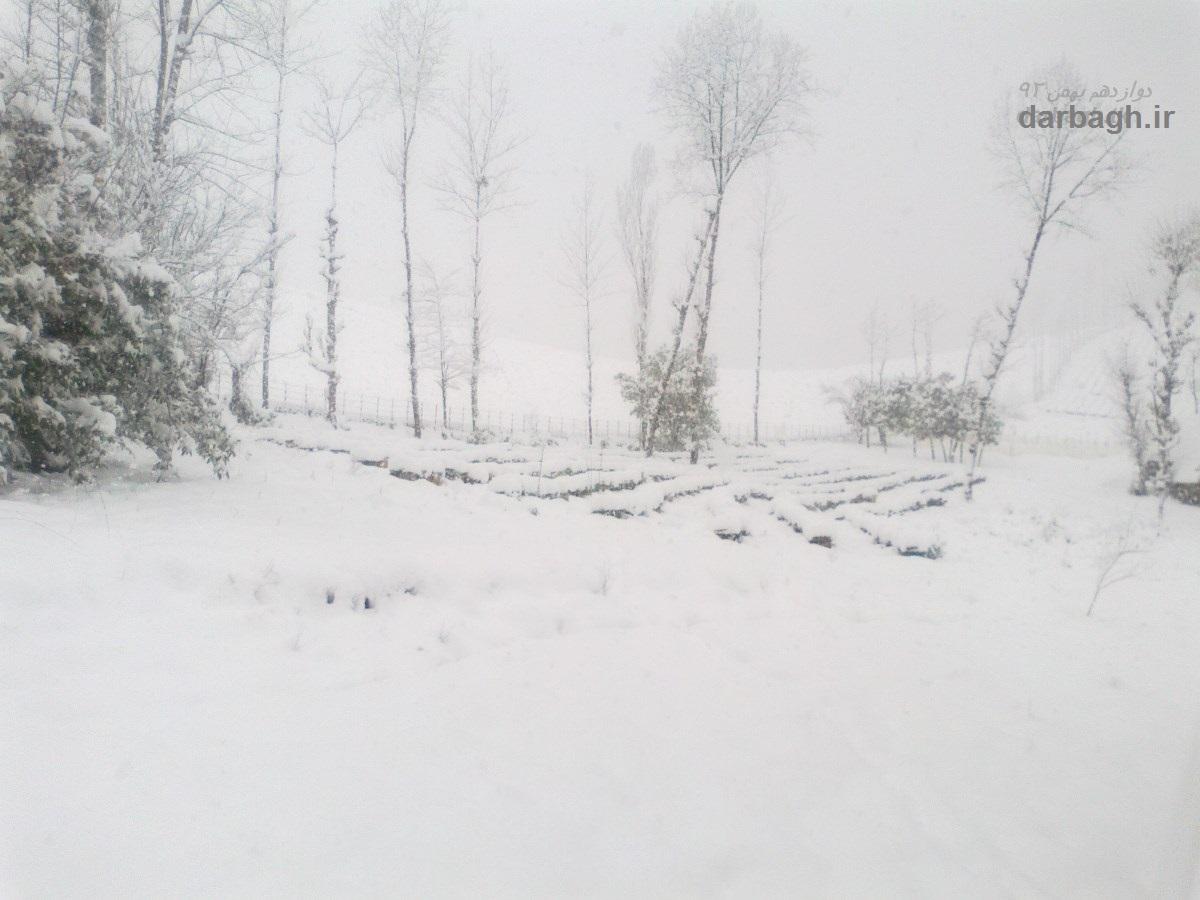 barf darbagh ir 12 9  برف دارباغ 12 بهمن 92