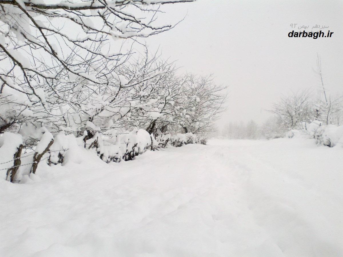 barf darbagh ir13 11 92 7  عکسهای برف دارباغ 13 بهمن 92