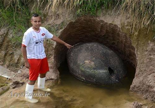 کشف  تخم یک دایناسور در آرژانتین , جالب وخواندنی