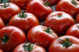 با گوجه فرنگی خطر سکته مغزی را کاهش دهید