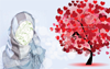 ابزار پرده خوش امد گويي وبلاگ شماره یازدهم