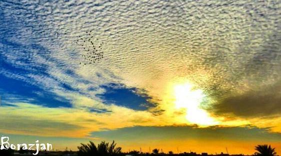 آسمان برازجان