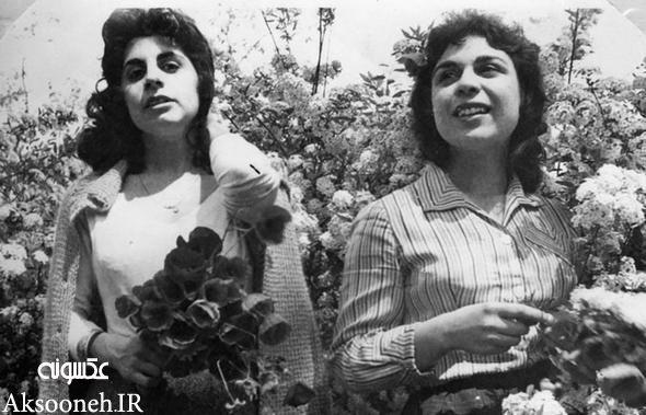 عکس های زیبا از تهران در دوران پهلوی