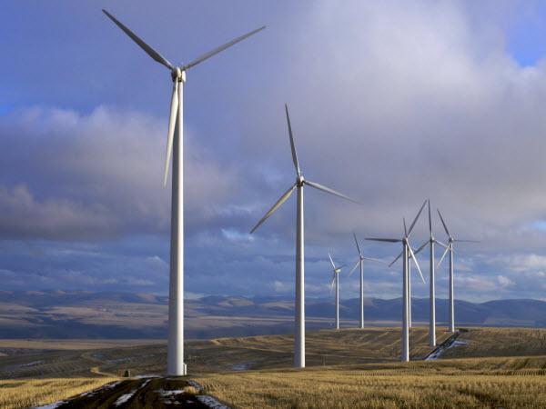 دانلود پایان نامه تحلیل و حفاظت توربین های بادی و کنترل توان تولیدی نیروگاه بادی