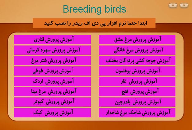 برنامه پرورش پرندگان