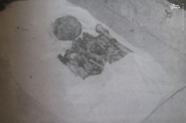 صندوق استخوانهای نادرشاه