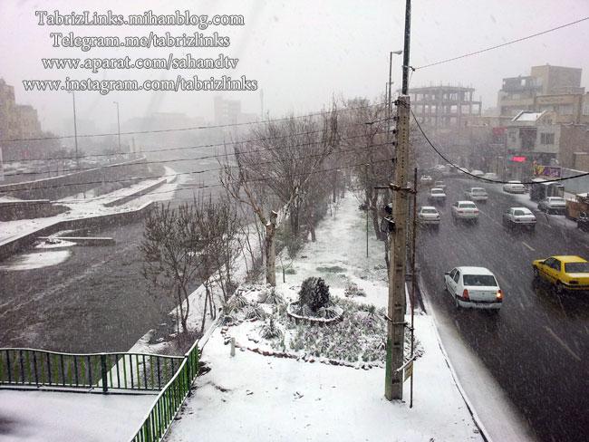 شهرداری منطقه 1 تبریز