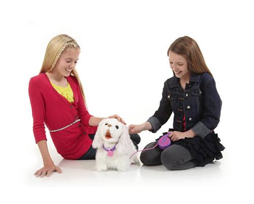 فروش سگ جینو اصل با گارانتی